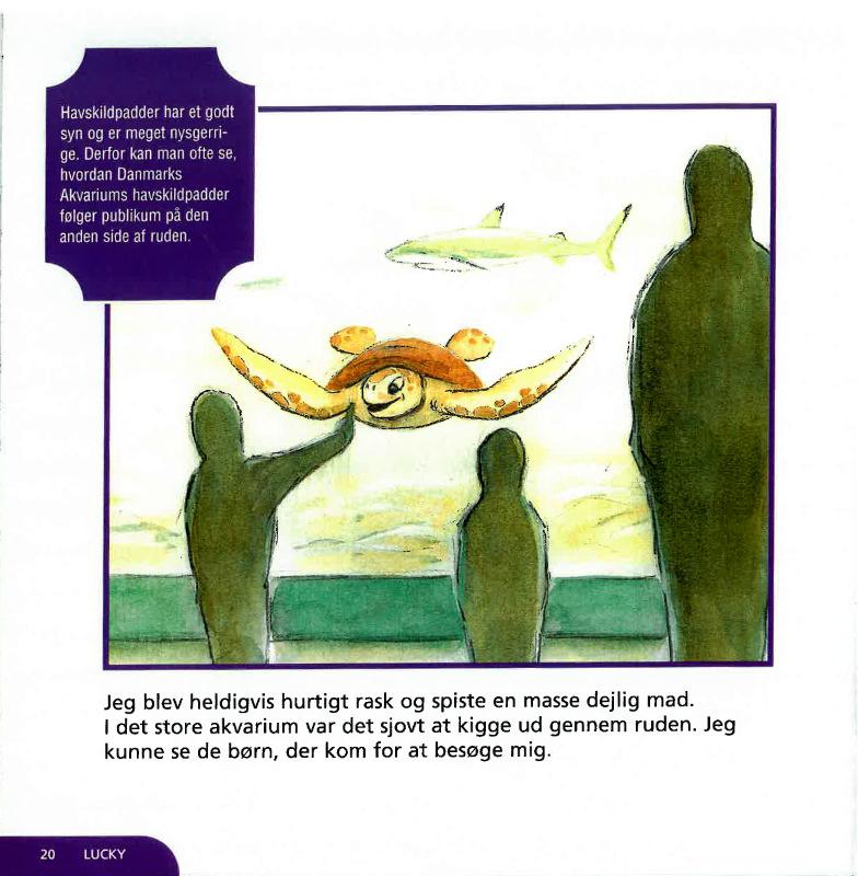 LUCKY - en havskilpadde på eventyr